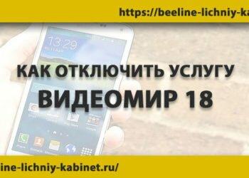Отключение услуги Видеомир 18 на Билайн