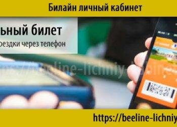 Мобильный билет — удобная оплата проезда через смартфон