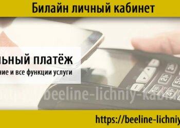 Мобильный платёж — подключение, описание всех возможностей
