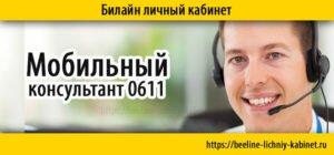 мобильный консультант 0611