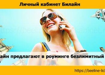 Visa и Билайн предлагают в роуминге безлимитный интернет