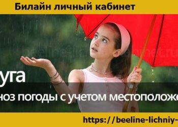 Услуга «Прогноз погоды с учетом местоположения»