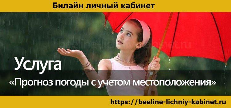 «Прогноз погоды с учетом местоположения» от Билайн